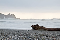 IMG_0076-2P (Timberworld) Tags: stonebeach wood ocean