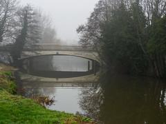 Foggy day on the Wey-F1220394 (tony.rummery) Tags: bridge em5mkii fog guildford mft microfourthirds omd olympus reflections riverwey surrey winter england unitedkingdom