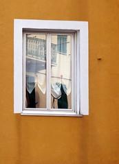 tendina con riflessi (fotomie2009) Tags: safari fotografico conmeg 2020 01 gennaio zinola savona liguria ponente ligure window finestra reflections riflesso curtain tenda ocra