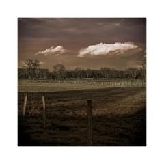 Clouds (b_kohnert) Tags: outdoor fields trees clouds sky landscape nature painting digitalpainting digitalart