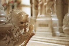 San Lorenzo Maggiore, Napoli (Ciaa08) Tags: analogica analogue analog filmcamera filmphotography film vintage 35mm nikonfm2 kodakcolorplus200 napoli sanlorenzomaggiore tinodicamaino sepolcrodicaterinadaustria leone 2020 lemiefotofannoschifo