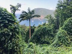 Baie de Deshaies, Basse Terre, Guadeloupe