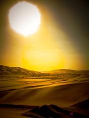 Chaleur (Bonsailara1) Tags: bonsailara1 abudhabi desert desierto uae sunlight soleado yellow gold dorado calor heat sand dunes dunas arena