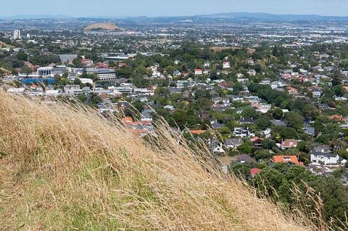 1669 Auckland.jpg