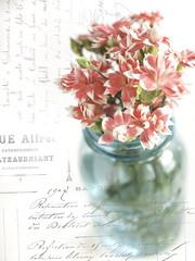 Floral Display (JMS2) Tags: stilllife flowers base balljar vintage blue pink tabletop floral
