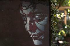 Urban Art (michael_hamburg69) Tags: hamburg germany deutschland urbanart streetart gängeviertel artist künstler adey adelineyvetot ivy efeu female face gesicht closedeyes woman girl