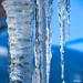 Ice Blue - Bleu glacé
