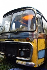 Add Watermark20200123124128 (richellis1978) Tags: bus coach restoration packed yard bedford val beatles magical mystery tour maghull liverpool gnb518d plaxton c47f cavern city