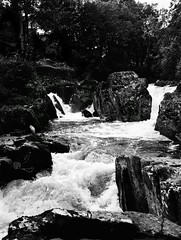 Torrent, Rock & still Grey Heron. Betws-y-Coed, Wales (hedshot) Tags: contrast landscape wales mediumformat mf 120 nofilter nophotoshop blackandwhite
