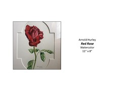 """Red Rose • <a style=""""font-size:0.8em;"""" href=""""http://www.flickr.com/photos/124378531@N04/49429436898/"""" target=""""_blank"""">View on Flickr</a>"""