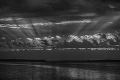 lr_2L0A4461_190926_0701-Edit (Paul Lantz) Tags: 2019september26 70200mm bayofquinte belleville cloudy janeforresterpark sunrise