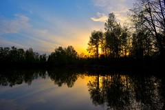 Sunset (JSB PHOTOGRAPHS) Tags: jsb3305 sunset altonbakerpark trees water pond sky clouds reflections recreation
