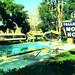 Tallahassee Motor Hotel and Dining Room, Tallahassee, Florida