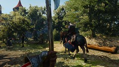 In the eyes of a guard.. (gamescreenshots) Tags: gaming game horse nature war axe weapon