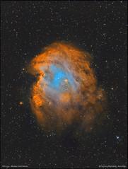 NGC2174 -  Monkey Head Nebula - Hubble Palette (francesco.battistella) Tags: astrophotography astronomy astroatlas amazing qhyccd qhy9 optolong filters narrowband colours nebula monkey ngc2174 space cosmos universe beautiful astrometrydotnet:id=nova3892798 astrometrydotnet:status=solved