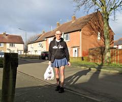Photo of Adidas Skater Skirt.