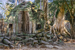 Ta Prohm, Angkor area, Cambodia (Janos Kertesz) Tags: cambodia temple religion tree old stone architecture asia angkor wat ancient cambodian buddhism khmer jungle taprohm