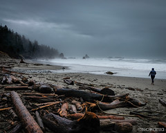 Wanderlust (Nick Kanta) Tags: beach clouds color driftwood fujifilm julie ocean oregon oregoncoast outdoorphotography pacific sand seastacks sky surf trees water waves xt10