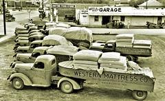 International Harvestor trucks ca1948 NARA RG16-H-009-01-di1397 (over 21 MILLION views Thanks) Tags: cotton historical mattresses transportation trucks sanangelo tx us internationalharvester 1947