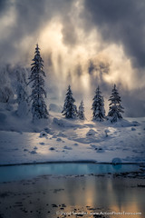 Steamy Mist (David Swindler (ActionPhotoTours.com)) Tags: actionphototours hotsprings ice snow wyoming yellowstone fog hotspring steam tree trees winter