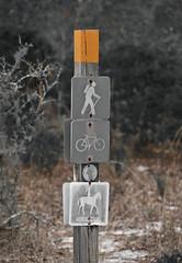Trail Sign (paulgarf53) Tags: camping trail hiking sign seminolestateforest florida nikon d700 nature