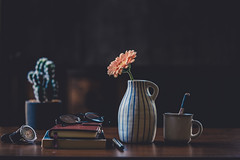 Magic in the mundane (Chapter2 Studio) Tags: stilllife sonya7ii soft simplicity solitude chapter2studio calm coffee cup classic lifestyle lowkey flower floral fineart f