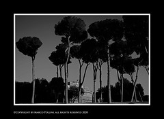 Mausoleo di Adriano (Pollini Photo Laboratory) Tags: marcopollini polliniphotolabcom fotografiaurbana streetphotography leica leicamp elmarit 28mm rome italy blackwhite bianconero monocrome