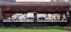 Graffiti on Freights (wojofoto) Tags: amsterdam nederland netherland holland freighttraingraffiti freighttrain freights cargotrain vrachttrein güterzug fr8 graffiti streetart wojofoto wolfgangjosten noeb noob