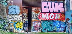 195 Paris Janvier 2020 - Petite Ceinture sortie du tunnel dans le XIIIème, rue Madeleine Brès (paspog) Tags: paris france janvier january petiteceinture chemindefer 2020 ruemadeleinebrès tunnel januar