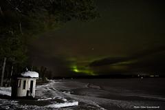 Northern light! (petergranström) Tags: approved norhern light norrsken lake sjö ice is snow snö sauna bastu trees träd clouds moln stjärnor stars