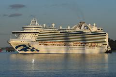 Crown Princess - Hound Point -- 07-09-19 (MarkP51) Tags: crownprincess houndpoint firthofforth scotland cruise liner ship boat vessel sea water sunshine sunny nikon d500 nikon70200f4vr