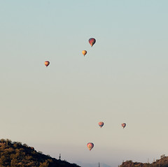 Jan 23 - 1 of 112 (Verde River) Tags: hotairballoons landscape landscapes bird birds phainopepla woodpecker thrush cactuswren cactus kieslingfalcon gambelsquail deer muledeer nature