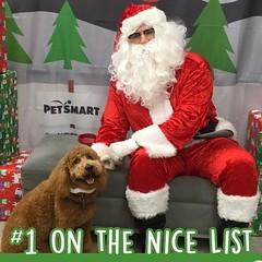 Maggie Mae with Santa
