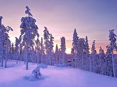 Laponie (Jean.Schneider) Tags: levi lapland winter light sunset sunrise snow december ski resort s8