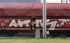 Graffiti on Freights (wojofoto) Tags: amsterdam nederland netherland holland freighttraingraffiti freighttrain freights cargotrain vrachttrein güterzug fr8 graffiti streetart wojofoto wolfgangjosten antik