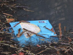 Rubbish, Monmouthshire-Brecon Canal, Retail Park, Cwmbran 23 January 2020 (Cold War Warrior) Tags: aldi bag litter canal cwmbran