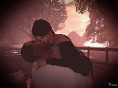 Kisses my love wife (亗 Mosse Winterfell 亗) Tags: kisses love wife happy romance cuddle
