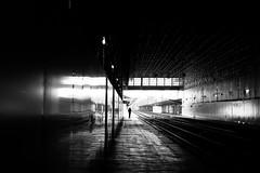 Wandering (pascalcolin1) Tags: paris13 austerlitz gare station garedausterlitz homme man quais quai lumière light lignes lines photoderue streetview urbanarte noiretblanc blackandwhite photopascalcolin 50mm canon50mm canon