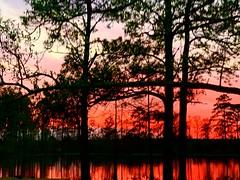 Louisiana Sunset (nrgcreationsinc) Tags: joycorrell mikecorrell fulltimerv rv boondocking nrgcreations nrgrv sunsets louisiana
