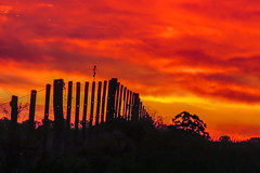 Red Sunset (FVillalpando) Tags: red sunset nature fence colour black clouds mood uruguay silhouette