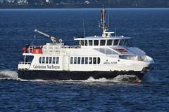 MV Argyle Flyer - Gourock - 18-01-20 (MarkP51) Tags: mvargyleflyer gourock firthofclyde scotland caledonianmacbrayne calmac ferry ship boat vessel sea water sunshine sunny nikon d500 nikon200500f56vr