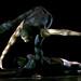 dancer dancing dance music woman 4663729 Edited 2020