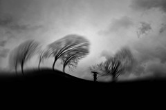 Other voices (Fan.D & Dav.C Photgraphy) Tags: environment low angle view branch plant part tranquil scene silhouette scenics nature tranquility beauty in cloud sky tree day black white sadness silence no people outdoors weather bare bw blackandwhite bwphotography blackandwhitephotography noiretblanc