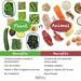 Animal vs Plant Protein Benefits