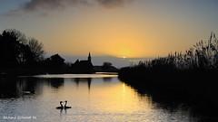 North Holland Sunrise (De Hollena) Tags: sunrise sonnenaufgang amanecer morgenröte landscape landscapephotography paysage landschaft landschaftsfotografie oudendijk noordholland northholland nordholland holland thenetherlands lespaysbas paisesbajos niederlande greatcrestedgrebe haubentaucher fuut
