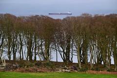 Neptune Moon (Zak355) Tags: rothesay isleofbute bute scotland scottish shipping ship neptunemoon vessel boat fueltanker