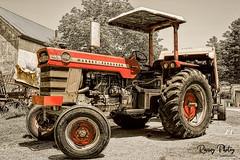 Massey Ferguson 1100 (robtm2010) Tags: framingham massachusetts usa newengland canon canon7d 7d eastleighfarm farm eastcoast tractor motorvehicle vehicle masseyferguson1100