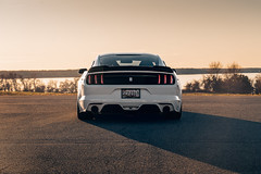 Ford Mustang 5.0 4 (Arlen Liverman) Tags: exotic maryland automotivephotographer automotivephotography aml amlphotographscom car vehicle sports ford mustang 50 american muscle