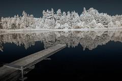 Infrared lake (Mads S. Hansen) Tags: nikon d7100 infra infrared red tree trees lake plank