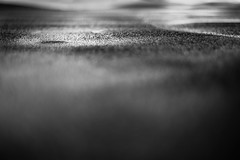 Lost Lake (Jeremy Beckman) Tags: blackandwhite orangeempirerailwaymuseum oerm tidewater flatcar cover puddle water curves hills texture rough abstractlandscape detail abstract